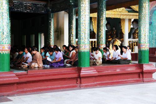 meditate buddha meditation
