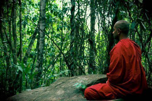 meditation bhikkhu mahamevnawa