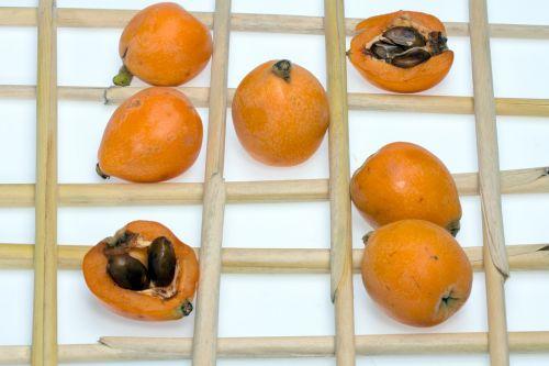medlars fruits composition