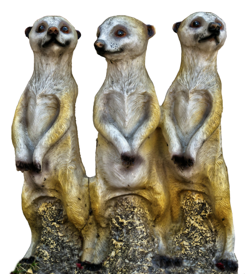 meerkat group ceramic