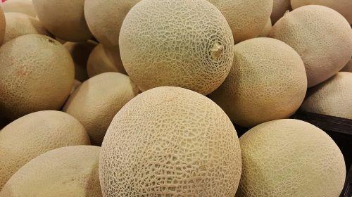melon cantaloupe canteloupe