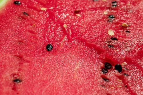 melon watermelon pulp