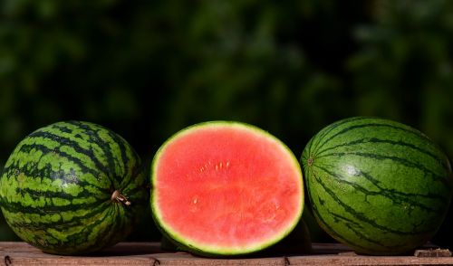 melon ziermelone watermelon