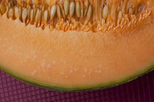 melon  orange  cores