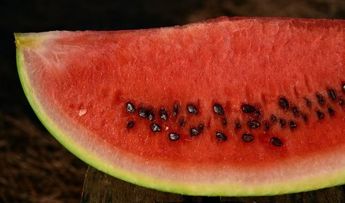melon  watermelon  fruit