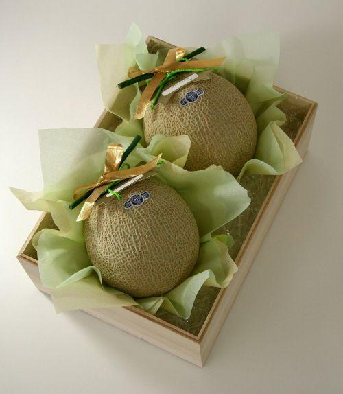 melon cantaloupe gifts