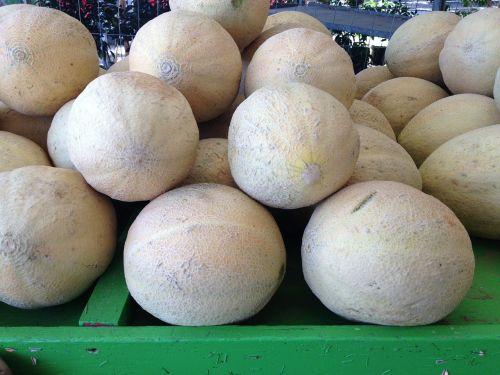 melon cantaloupe fresh