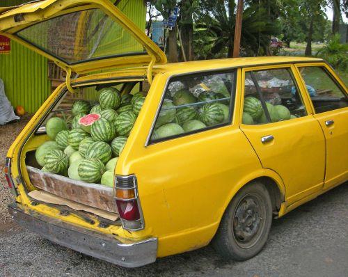 arbūzas, pristatymas, automobilis, pakrautas, juokinga, melionas, meliono pristatymas