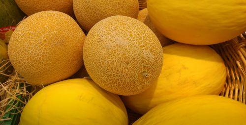 melons cantaloupe fruit