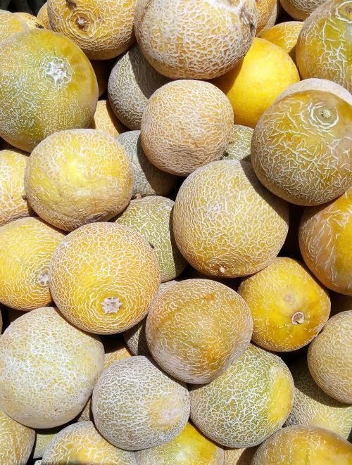 melons yellow food