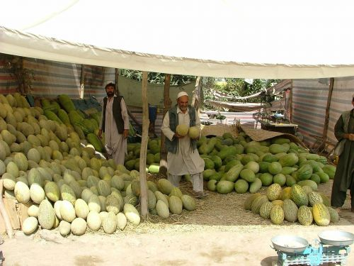 melons market stall kabul