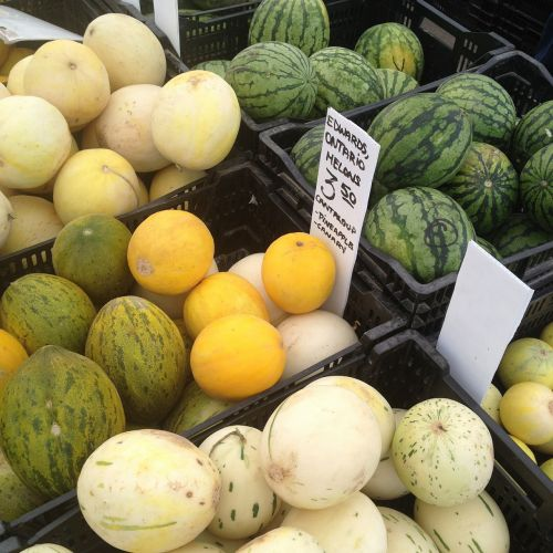 melons watermelons fruit