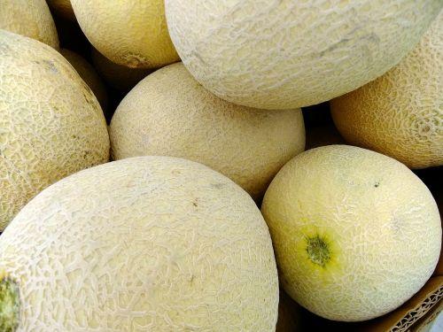 melons honeydew fruit