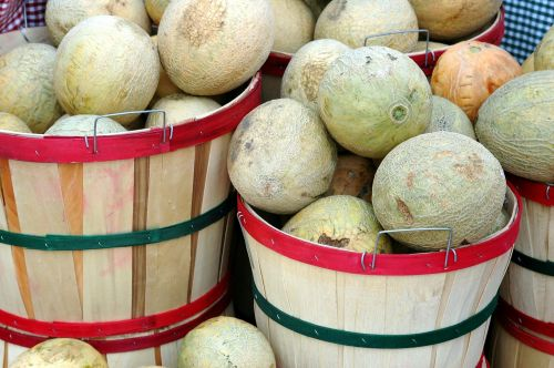Melons For Sale
