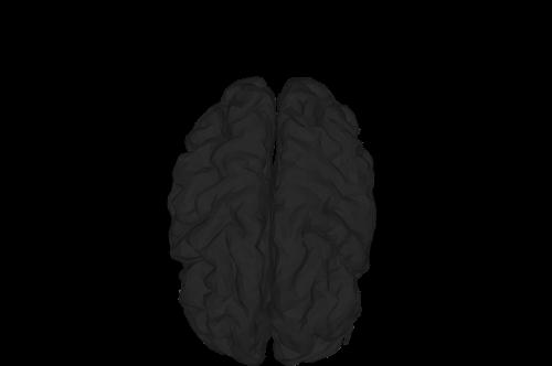 mental health abstract anatomy