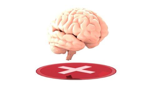 mental health  brain  mental