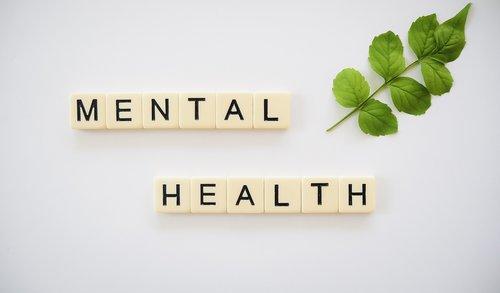 mental health  mental wellness  mind