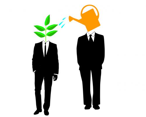 mentor startup mentorship