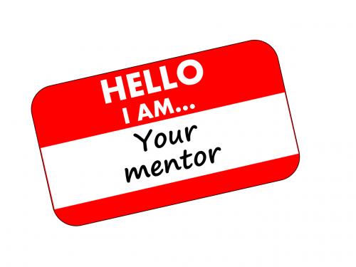 mentor startup mentoring