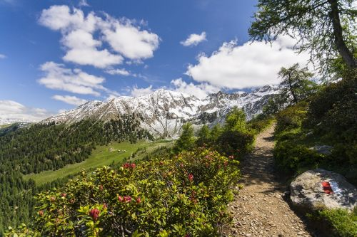 meran landscape hike
