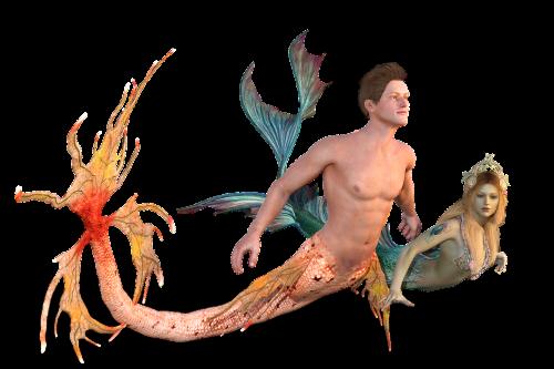mermaid sea man meeresbewohner