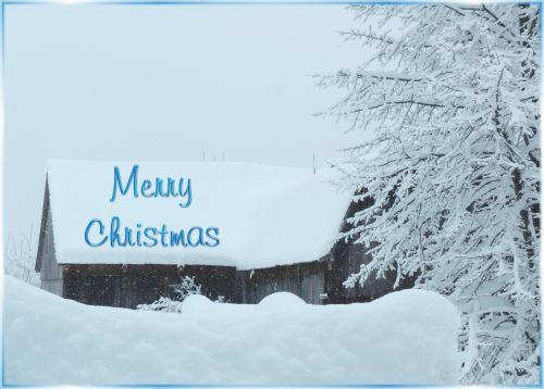 Merry Christmas 2014 # 1