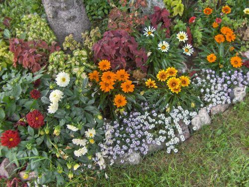 My Old Gardens (17)