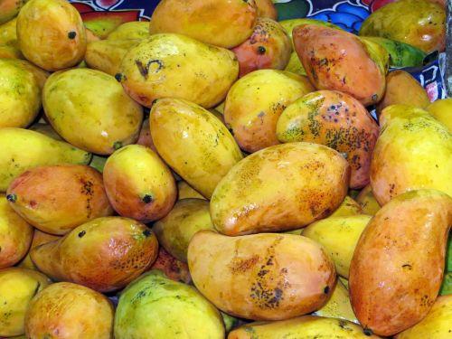 mexico mango market