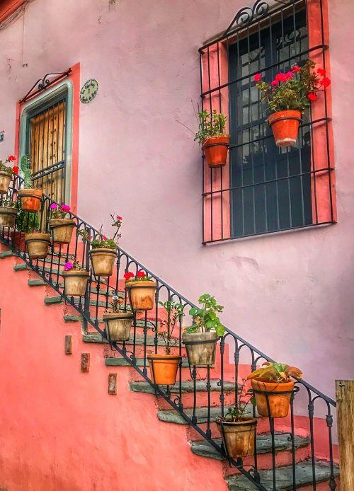 mexico guanajuato city