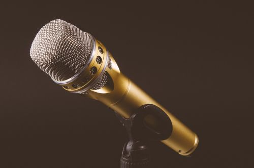 microphone mic mike