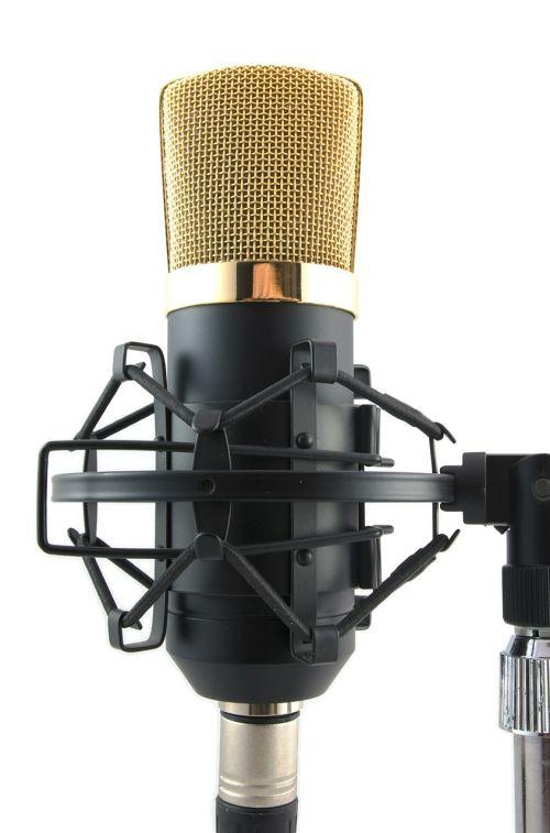 microphone mic vocal