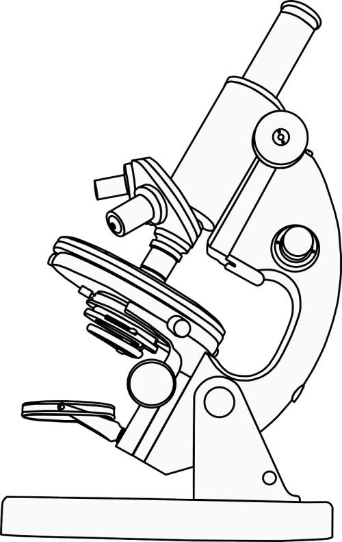 microscope magnification research