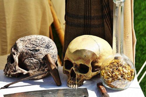 middle ages  bone  skull