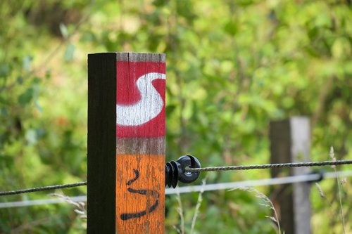 migratory character  electric fence  fence