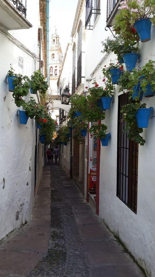 mijas flower boxes alley