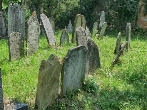 mikulov jewish cemetery jewish