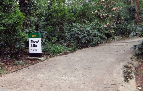 milestone road sign roadsign