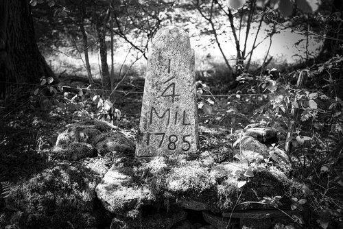 milestone  antiquities  in the year