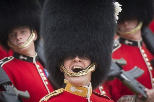 military army foot guards