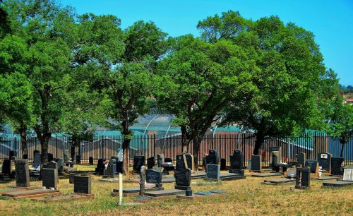 Military Grave Yard