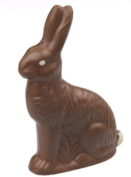 milk chocolate bunny candy sweets