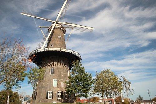 mill  lead  wind mill