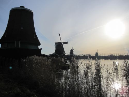 malūnai,zaanse schans,holland,Nyderlandai,mėlynas dangus,olandų kraštovaizdis,vanduo,gamta,North Holland