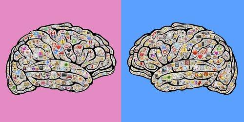 mindsets  experiences  gender