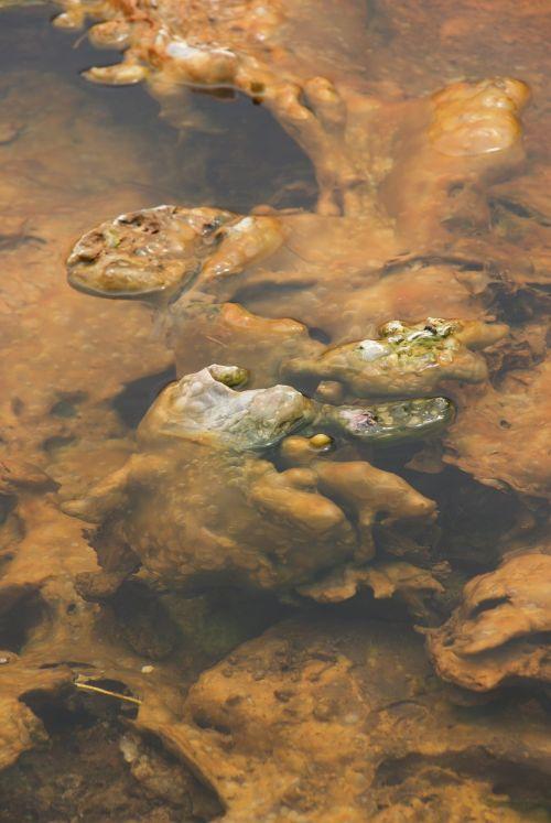 mineral sulphur hot spring