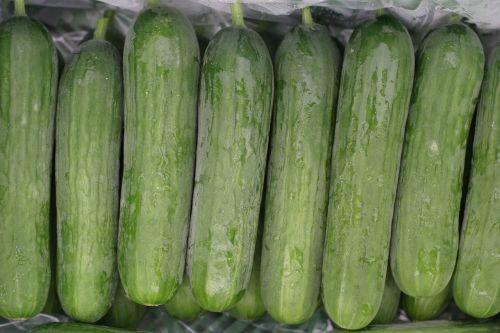 mini cucumbers cucumbers salad