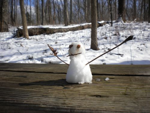 Mini Snowman Character