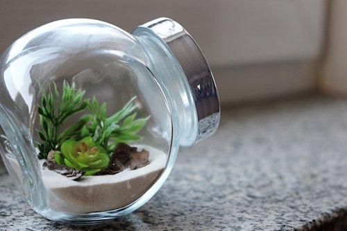 miniature  minimalist  glass