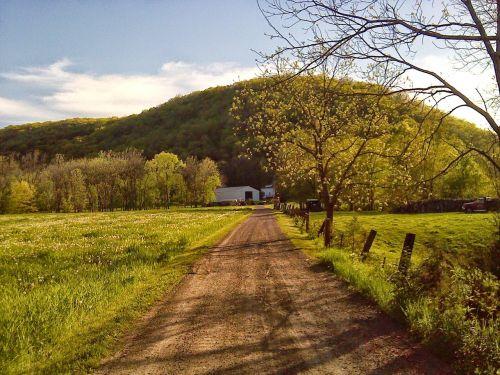 minnesota spring driveway