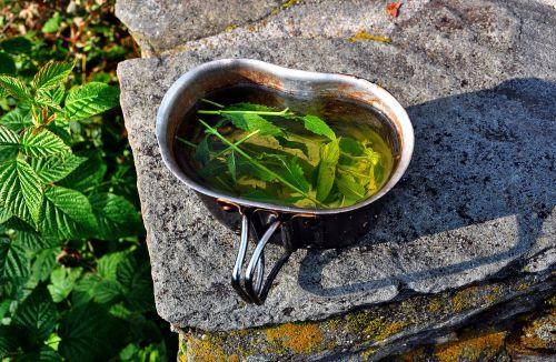 mint tea dish